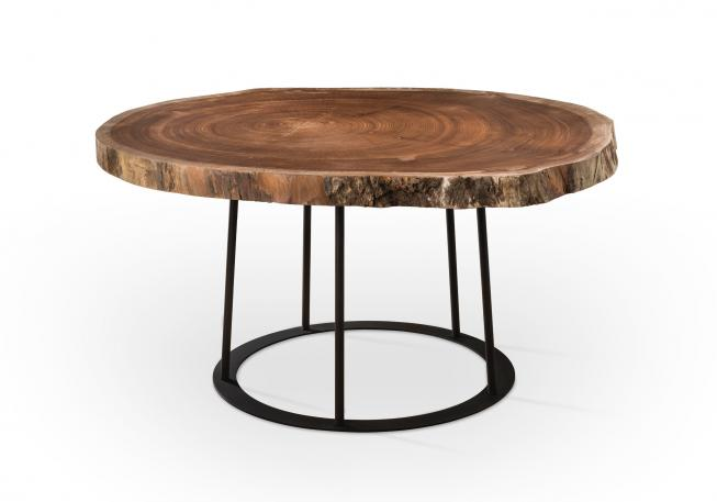 table . CAGE + tree slice . profile